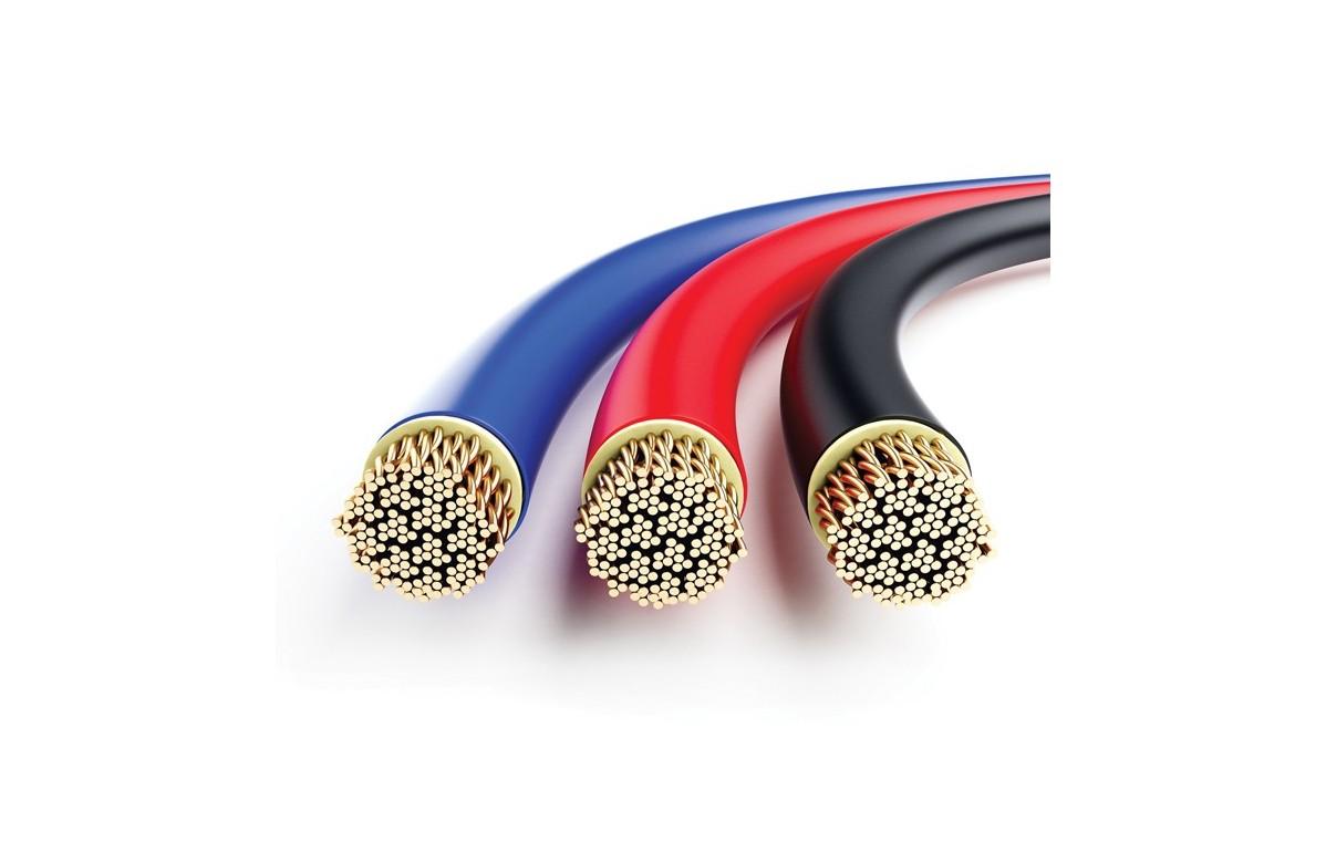 Kabel obwodu pacjenta do elektroterapii do aparatów BardoMed (E1, EU1), wtyk męski 4mm - KE-13